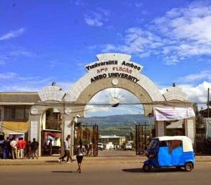 Ambo University  (2)